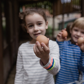 """Grell-Stiftung unterstützt """"Gesunde Ernährung"""""""