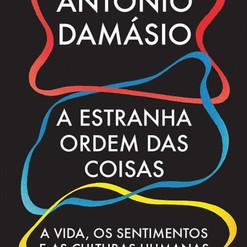 DAMÁSIO, António,
