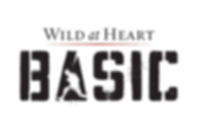 WaH_Basic-Logo-BlackRed_edited.png