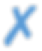 X ICON BLUE.png