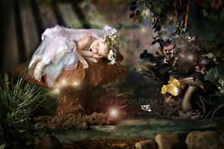 Your Eye on PHOto - Sleepy fairy lg