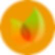 icons-orange.png