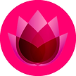 icons-pink.png