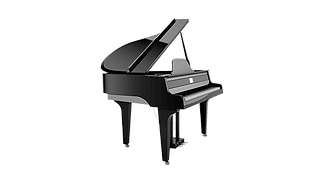 Physis® Piano G1000 hybrid grand piano