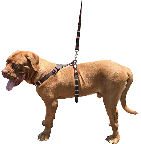 Genuine Leather Waxed Embroidered Dog Easy Control No Pull Harness & Lead Set