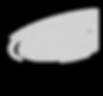 Logo DrumSpirit_Grau.png