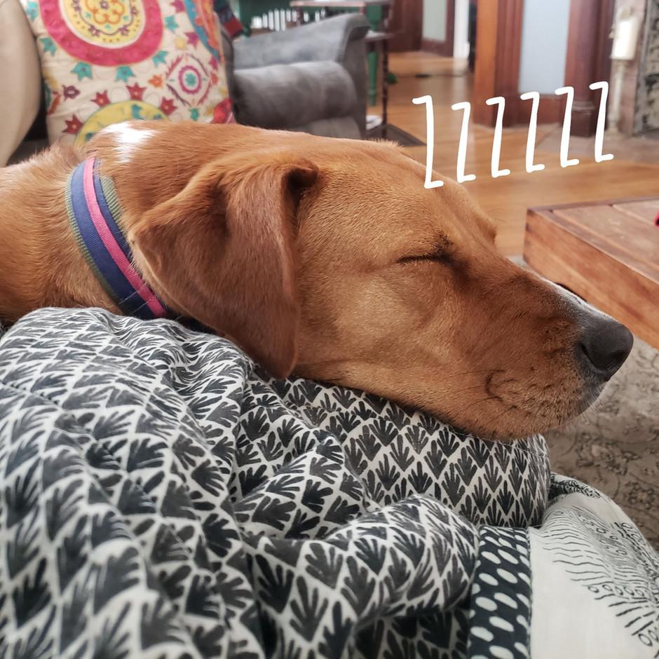 Sageism's Tuesday - Sleep