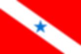bandeira_para.png