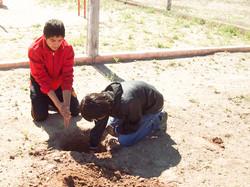 plantar un arbol-colonia dora 2012 (72)