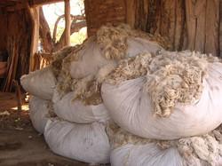 banco de lana (28)