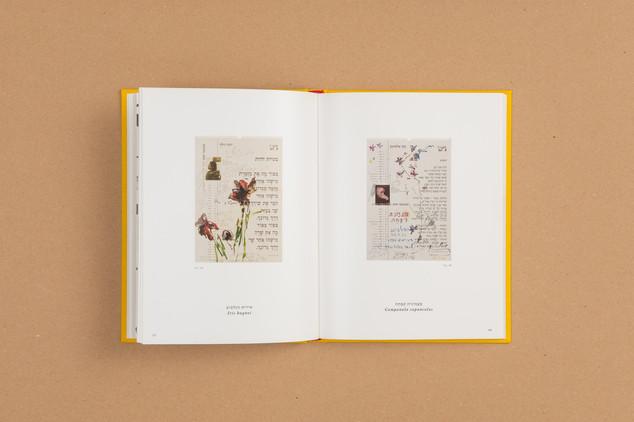 mealelet-944-Edit.JPG