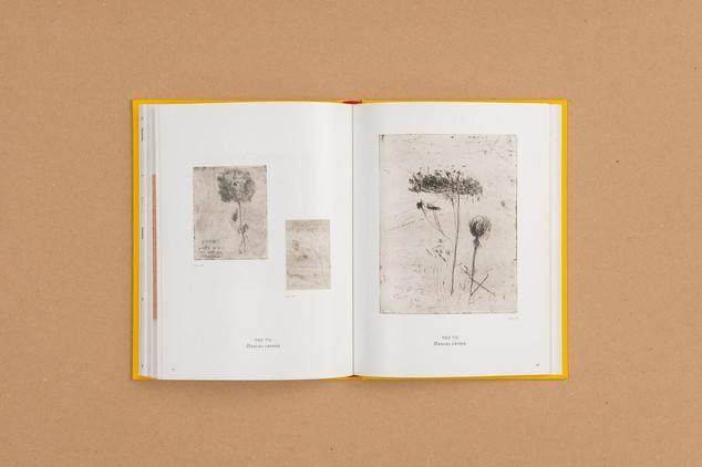 mealelet-981-Edit.JPG