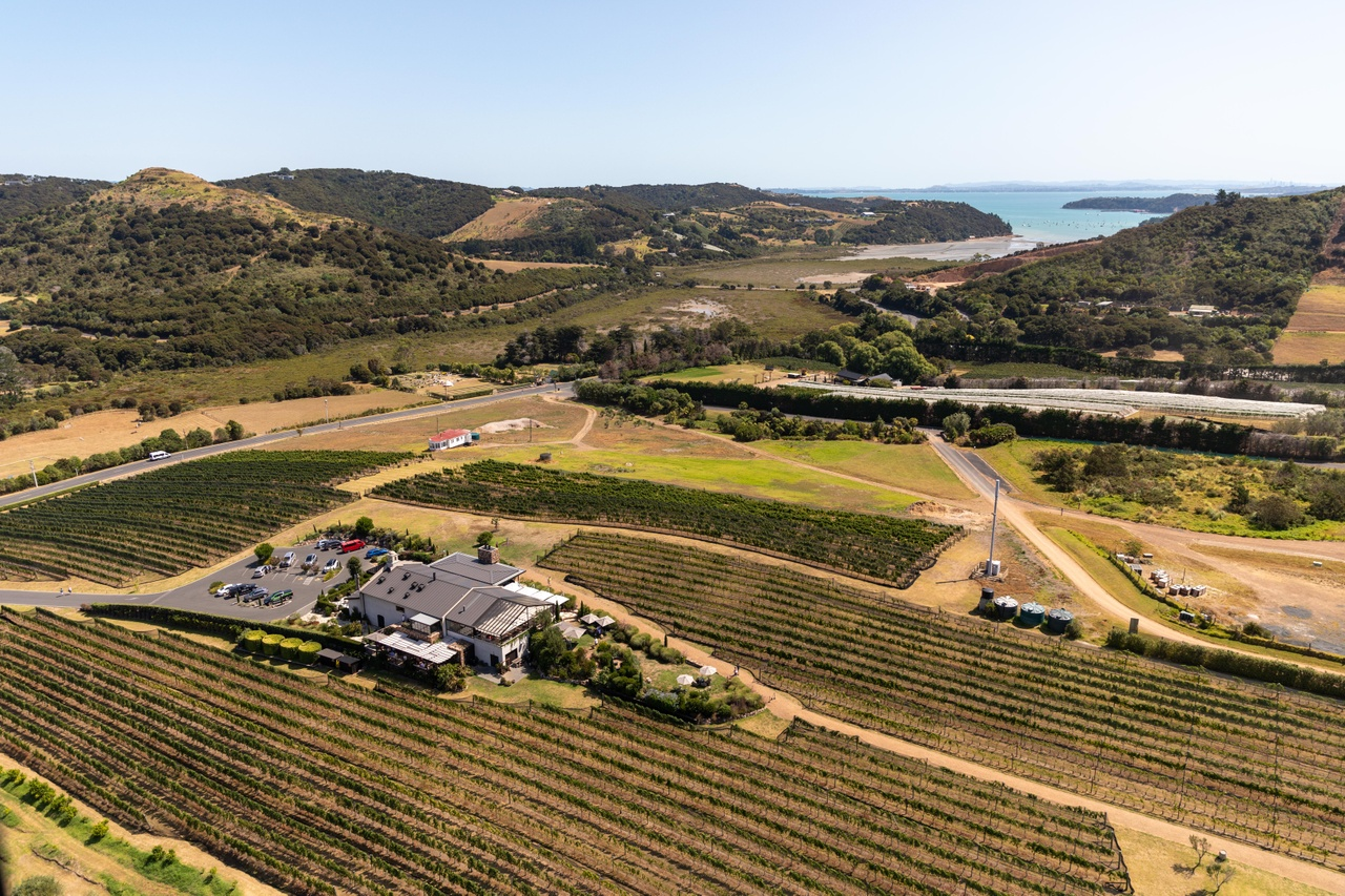 05 aerial shot of Waiheke vineyard surro