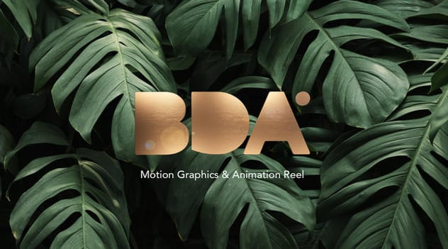 BDA Motion Graphics And Animation Reel