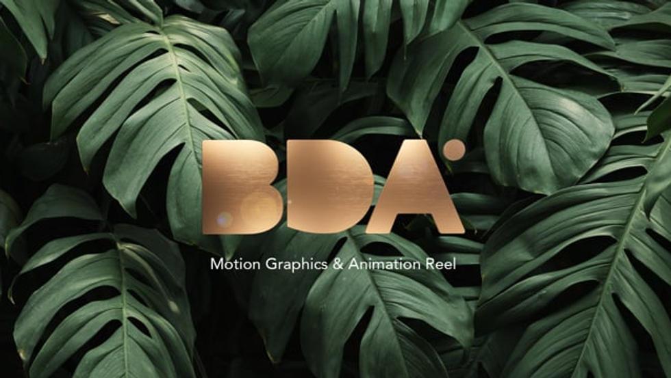 BDA Motion Graphics And Animation Reel