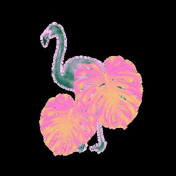 Flamingo 2.png