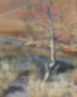 Fall at Wonderland Lake.jpg