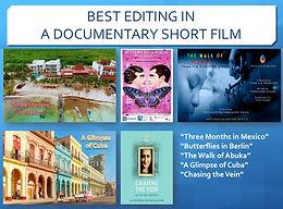 5_2019_SOFIE_Editing_Nominees.jpg