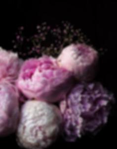 MN_MyFavs_FlowersPeonies.jpg
