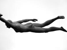fliegen Skulptur