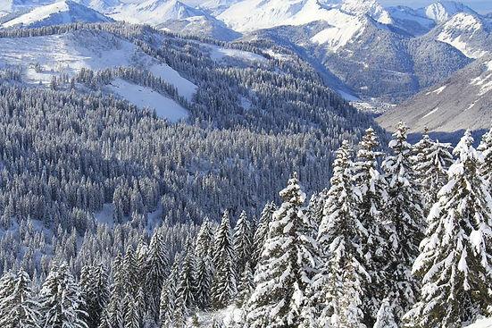 Morzine Avoriaz Ski Resort Portes du Soleil