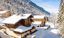 skiology.jpg