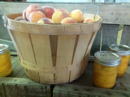 Peaches in the Winter!