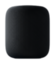 HomePod_PF_Blk_On_Wht_US-EN.tif-SCREEN.p