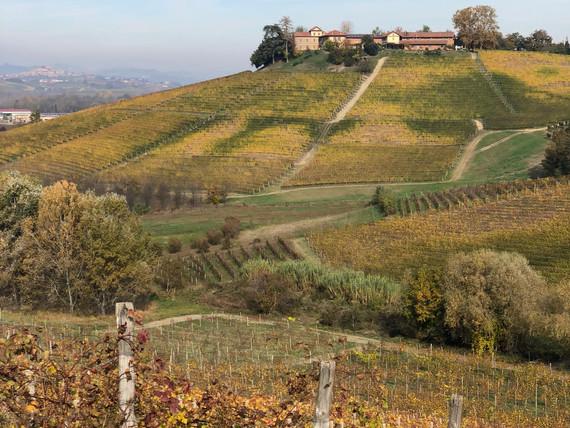 Piemont im Frühling