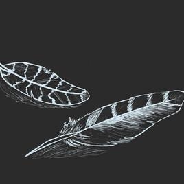 Accompaniment 18- Feather.jpg