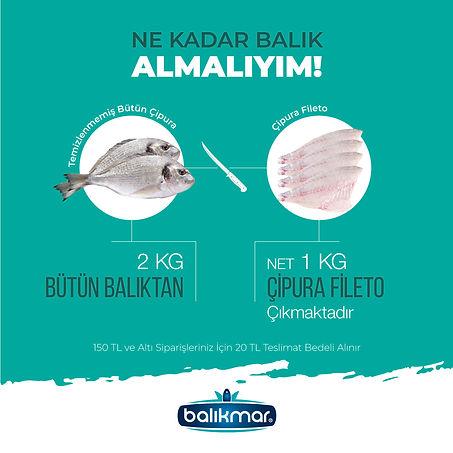 BALIKMAR-03.jpg
