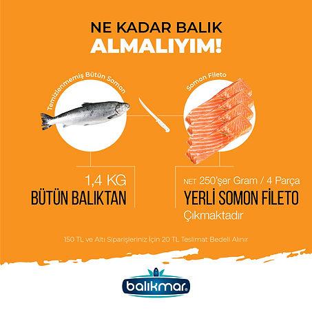BALIKMAR-04.jpg
