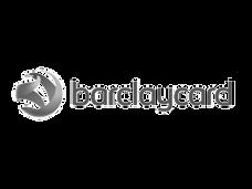 Ellipsis_Logos__0000_2000px-Barclaycard_