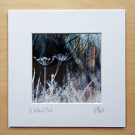 8 x 8 inch mounted print, Woodland Chill