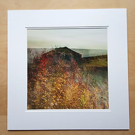 20 inch sq double mounted print, Willowherb Barn