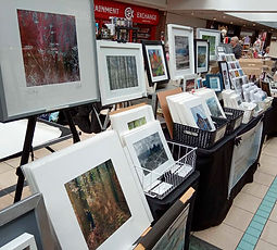 Alison Hall Photography, Camera Creatives, Market Stall