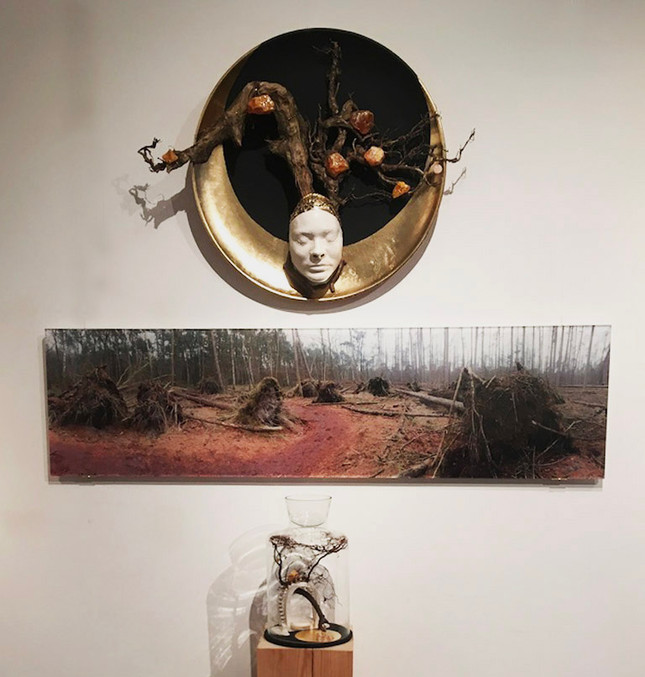 My Forest Gaia | Installatie