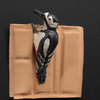 Specht, de Timmervogel | Beeld in opdracht
