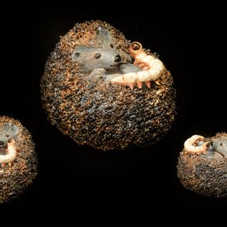 Egel en rups |Pelgrimsdieren