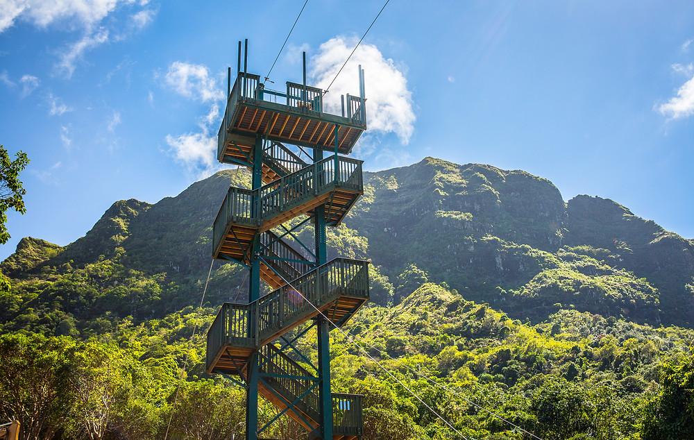 Skyline Ziplines skyTECH Eco-Tower zipline structure