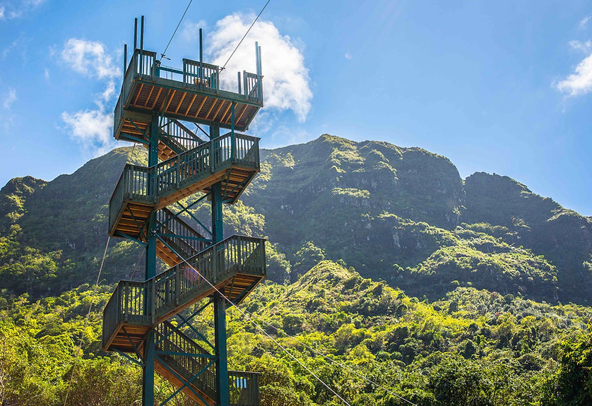 stairs to zipline tower
