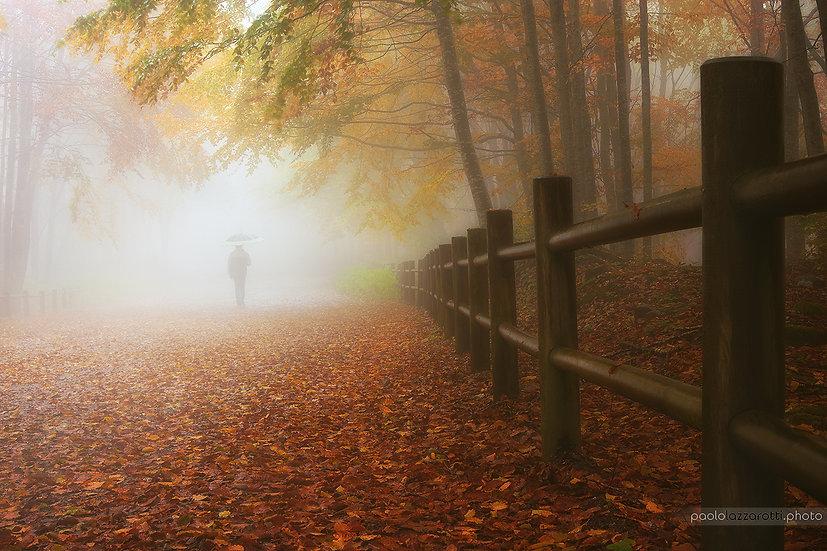 My Way to Autumn