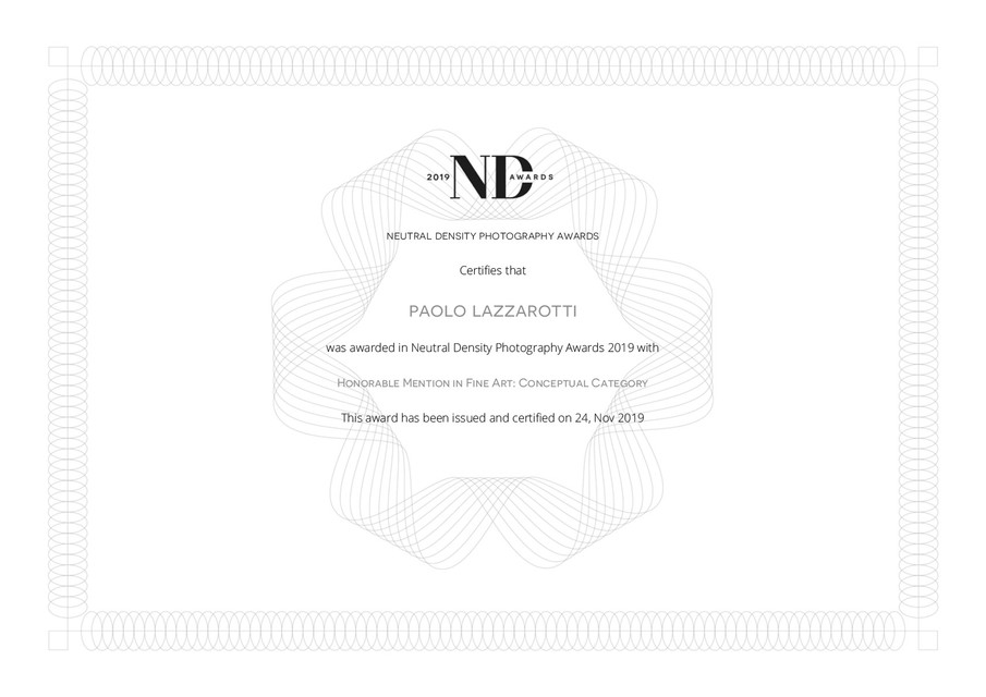 nd_certifcate_Paolo_Lazzarotti.jpg