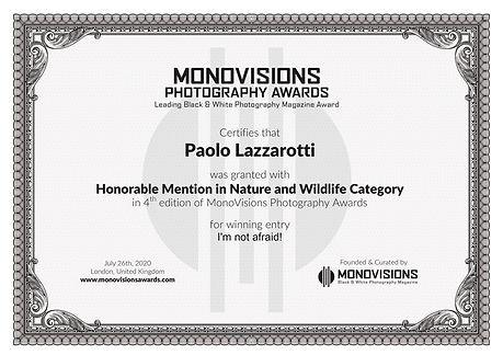 Monovisions_Certificate_NATURE.jpg