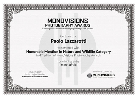 Monovisions_Certificate_NATURE.jpg