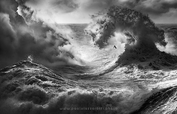 Poseidon Majesty (Part 6)