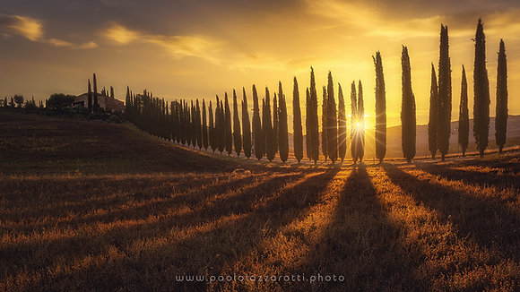 Dreaming Sunrise in Valdorcia (Part 2)