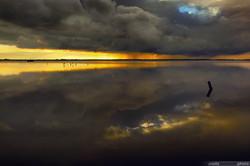 twilights15