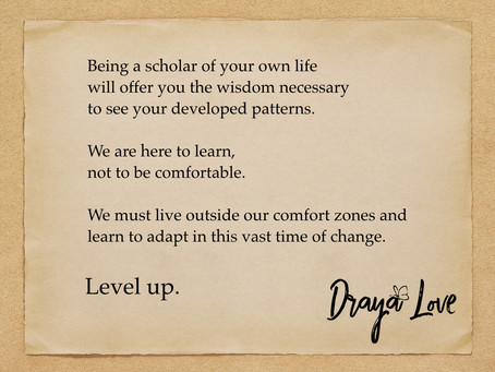 Scholar of your own life. Level up.