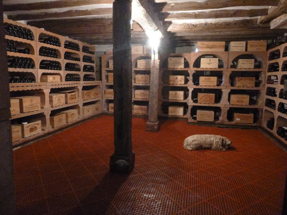 Wine Cellar1.jpg